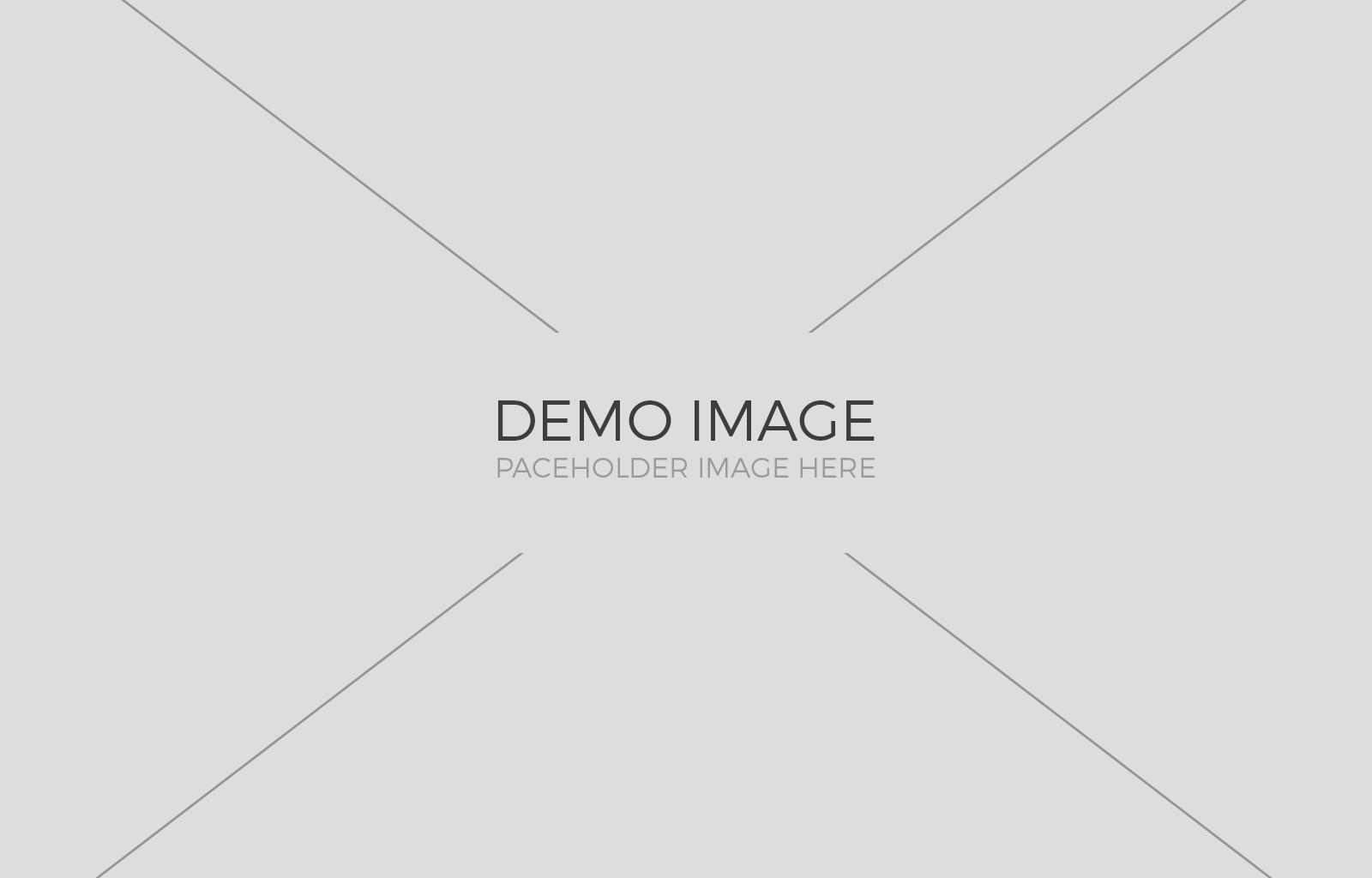 demo-img-2 2